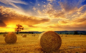 sun - Straw Field in Autumn Sunset Landscape Painting from Photos to Art